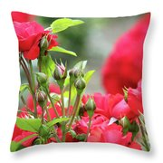 Roses Nature Spring Scene Throw Pillow