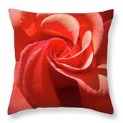 Roses Orange Rose Flower Spiral Artwork 4 Rose Garden Baslee Troutman Throw Pillow