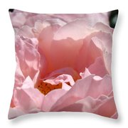 Roses Pink Rose Flower 2 Rose Garden Art Baslee Troutman Collection Throw Pillow
