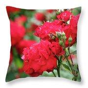 Roses Spring Scene Throw Pillow