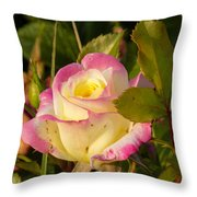 Roses Warm Hearts Throw Pillow