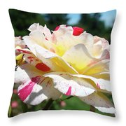 Roses White Pink Yellow Rose Flowers 3 Rose Garden Art Baslee Troutman Throw Pillow