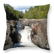 Rosetone Falls Throw Pillow