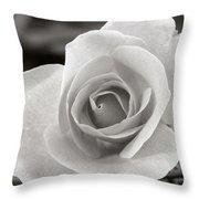 Rosewood009 Throw Pillow