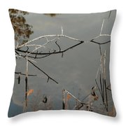 Rosey Bridge Throw Pillow