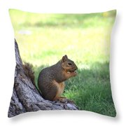 Roswell Squirrel Throw Pillow