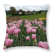 Rosy Field Throw Pillow