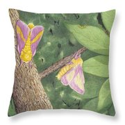 Rosy Maple Moth Gathering Throw Pillow