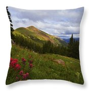 Rosy Paintbrushes Throw Pillow by Barbara Schultheis