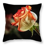 Rosy Red Reflections Throw Pillow