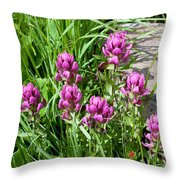 Rosy Wildflowers Throw Pillow