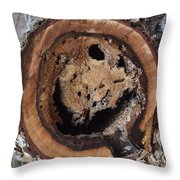 Rotted Out Throw Pillow