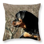 Rottie Profile Throw Pillow
