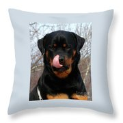 Rottweiler Missed A Spot Throw Pillow
