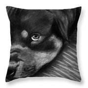 Rotty Throw Pillow
