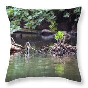 Roubidox Creek Throw Pillow