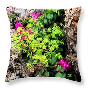 Rough Beauty Throw Pillow