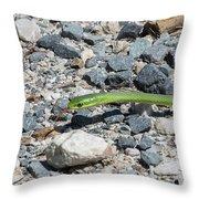 Rough Green Snake Throw Pillow