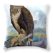 Rough Legged Buzzard Hawk Antique Bird Print The Birds Of Great Britain Throw Pillow