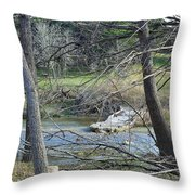Rough River At Times  Throw Pillow