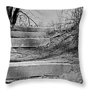 Rough Steps Up The Riverbank Throw Pillow