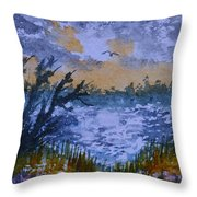Rough Sunrise At Orange Creek Throw Pillow