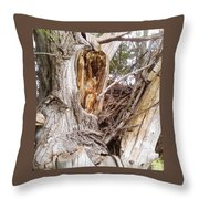 Rough Tree Throw Pillow
