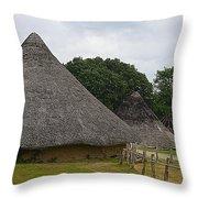 Round House Throw Pillow
