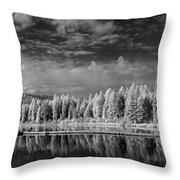 Round Lake State Park 2 Throw Pillow