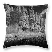 Round Lake State Park 4 Throw Pillow