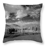 Round Lake State Park 6 Throw Pillow