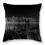 Round Lake State Park Idaho Throw Pillow