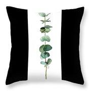 Round Leaf Eucalyptus Twig Throw Pillow