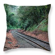 Round The Bend Throw Pillow