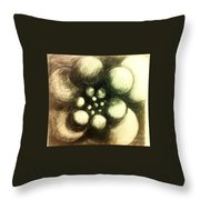 Round They Revolve  Throw Pillow