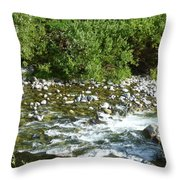 Rounded Rocks In A Rushing River Throw Pillow