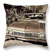 Route 66-69 Throw Pillow