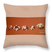 Row Of Cotton Throw Pillow