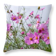 Row Of Pink Throw Pillow by Yew Kwang