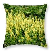 Row Of Yellow Flowers Throw Pillow