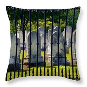 Rows Of Stone And Iron Throw Pillow