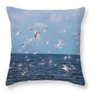 Royal Blue Ocean Tern Throw Pillow