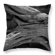 Royal Deadwood Study 2 Throw Pillow