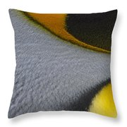 Royal Detail Throw Pillow