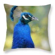 Royal Fowl 6 Throw Pillow