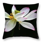 Royal Lotus Throw Pillow