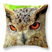 Royal Owl Throw Pillow