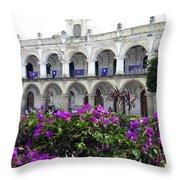 Royal Palace Old Antigua Throw Pillow