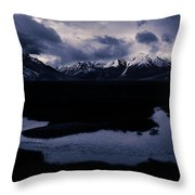 Royal Purple Throw Pillow