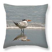 Royal Tern Reflection Throw Pillow